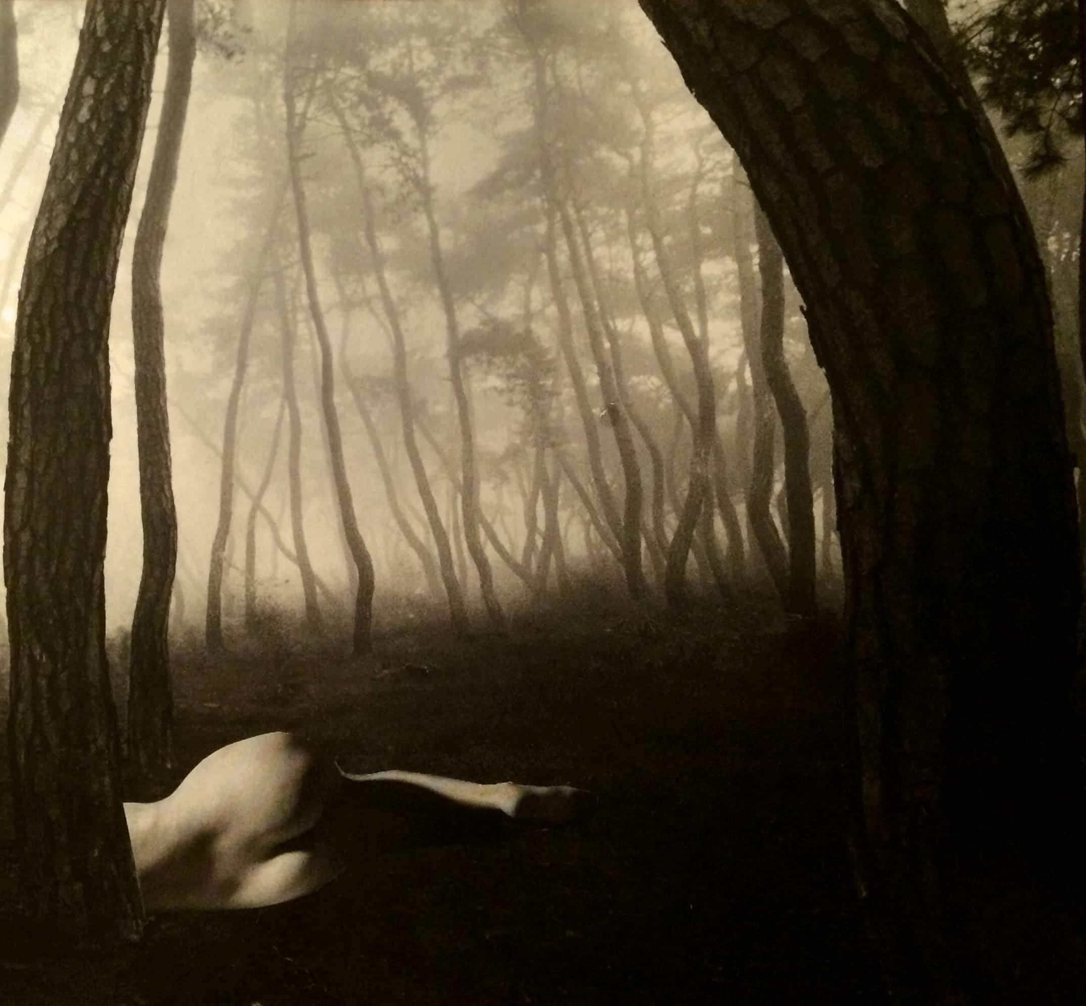 Peinture d'une femme allongée nue dans une forêt